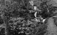 Arthog, A Waterfall 1888
