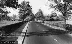 Arundel, General View c.1960