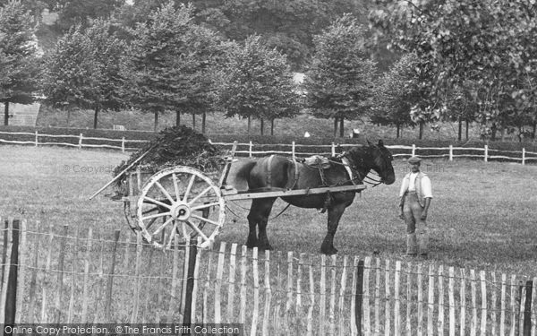 Photo of Arundel, Horse And Cart 1906