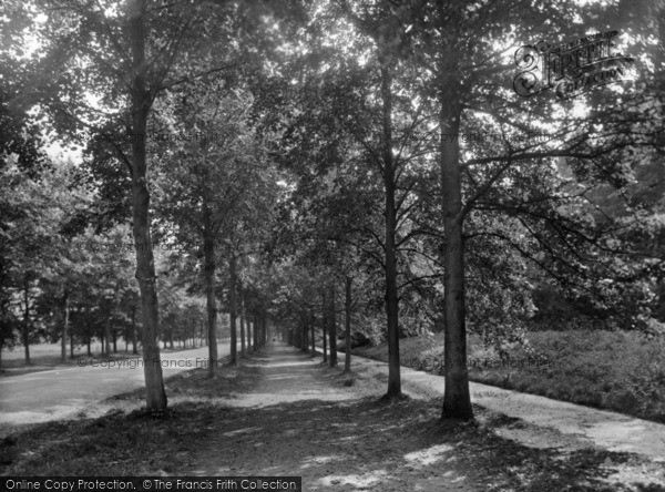 Photo of Arundel, Mill Road To Swanbourne Lake 1928