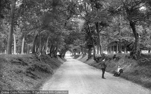 Arundel, Park Avenue 1908