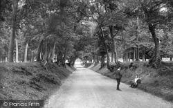 Park Avenue 1908, Arundel