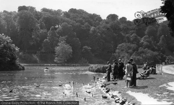 Photo of Arundel, Swanbourne Lake c.1955