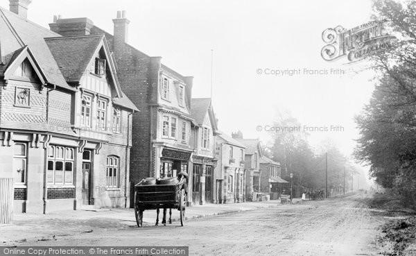 Photo of Ascot, 1903