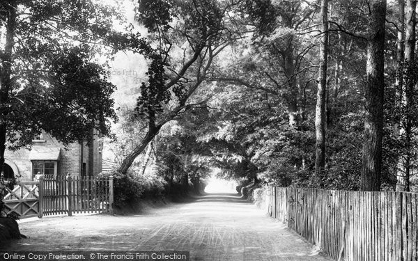 Photo of Ascot, Bog Lane 1901