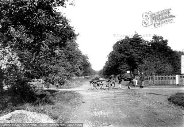 Photo of Ascot, Shepherd Whites Corner 1906