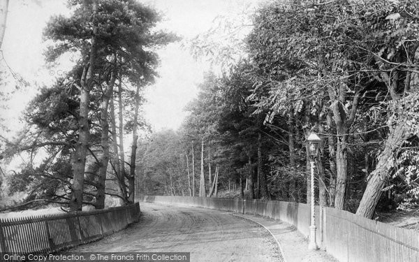 Photo of Ascot, Station Road 1903
