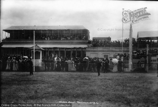 Photo of Ascot, The Lawn 1901
