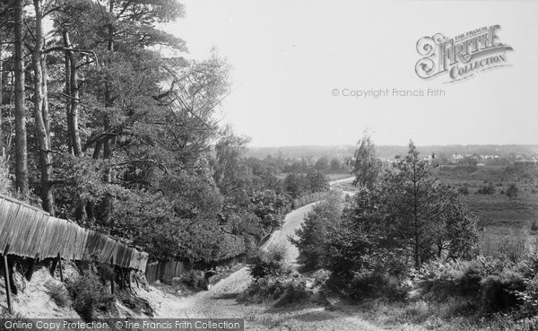 Photo of Ascot, View From Bog Hill 1901