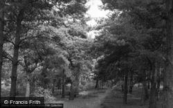 Ash Vale, Fox Hills 1955