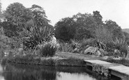 Ashburton, The Gardens, Holne Park 1913