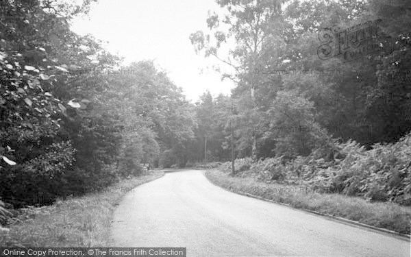 Photo of Ashby, Scawby Woods c.1955