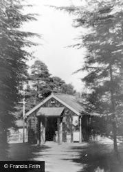 Ashdown Forest, Avenue And Providore, Broadstone Warren c.1955