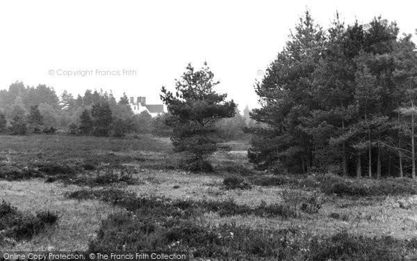 Ashdown Forest, Chelwood Gate 1928