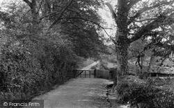 Ashdown Forest, Colemans Hatch Entrance To Shepherds Gate 1928