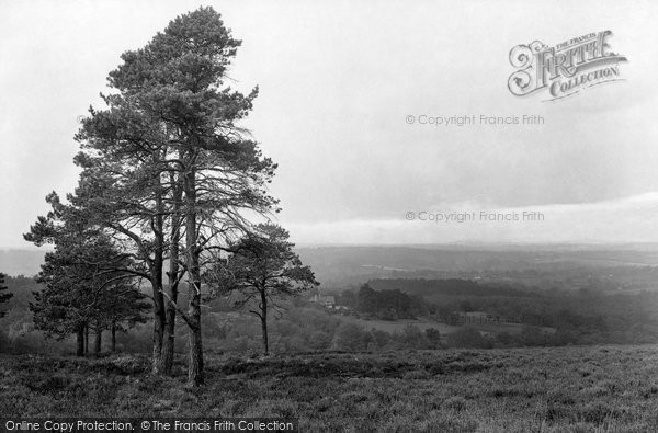 Photo of Ashdown Forest, From Colemans Hatch 1928