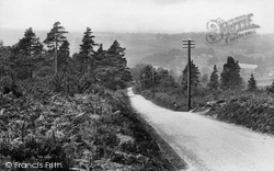 Ashdown Forest, Looking Down Captain Kidd's Hill 1927