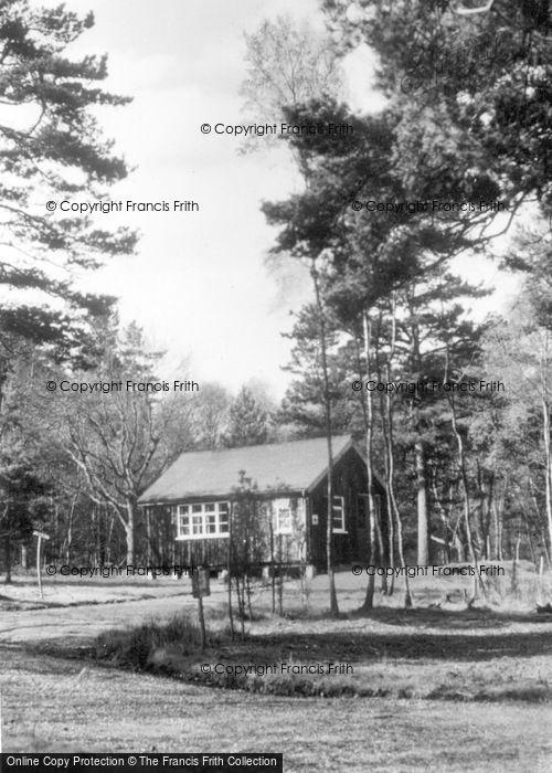 Photo of Ashdown Forest, Sick Bay, Broadstone Warren c.1955