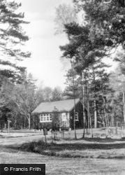 Ashdown Forest, Sick Bay, Broadstone Warren c.1955