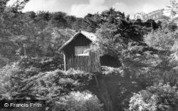 Tree House, Broadstone Warren  c.1955, Ashdown Forest