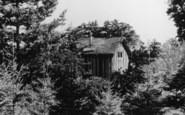 Ashdown Forest, Yew Tree House, Broadstone Warren c.1955