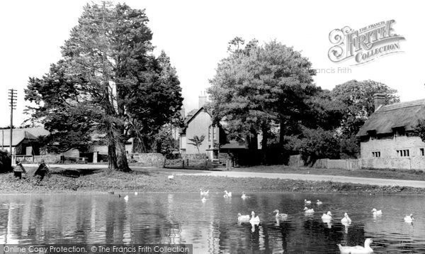 Photo of Ashmore, The Pond c.1960
