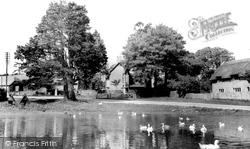 The Pond c.1960, Ashmore