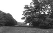 Ashtead, Woods 1908