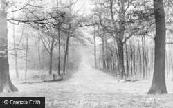 Aspley Guise, The Woods c.1955