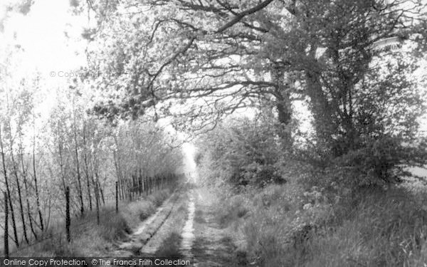 Photo of Assington, Wood Path c.1960