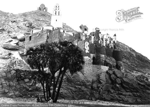 Photo of Assouan, A Doum Palm And Ruined Mosque At Mishdd 1860