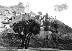 Assouan, A Doum Palm And Ruined Mosque At Mishdd 1860