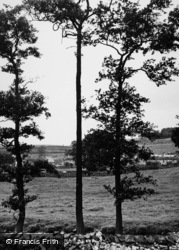 Austwick, A Peep Through The Trees c.1955