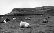 Austwick, Norber Cliffs c.1955