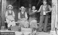 Avebury, Duck Pluckers c.1900