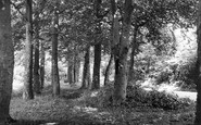 Aylesham, Spinney Lane c1955