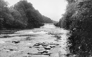 Aysgarth, Lower Falls c.1955