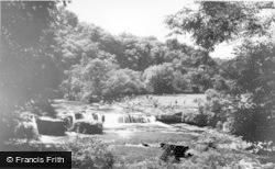 Aysgarth, The Falls c.1965