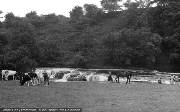 Photo of Aysgarth, Upper Falls c.1955