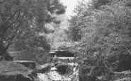 Bacup, The Dell In The Park c.1955