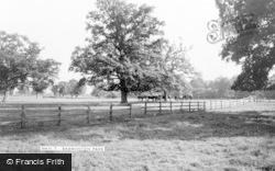 Park c.1960, Badminton