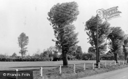 Badshot Lea, The Green c.1955