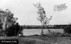 Badshot Lea, The Pond c.1955