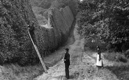 Bagshot, Cutting The Hedge 1906