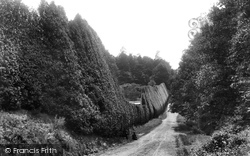 Bagshot, Holly Hedge, Pennyhill Park 1901