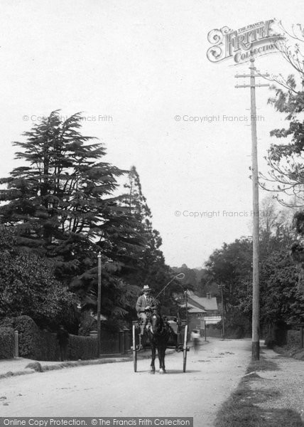 Photo of Bagshot, Horse And Cart, Portsmouth Road 1903