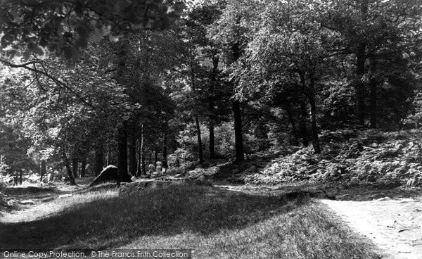 Photo of Baildon, In The Glen c.1960