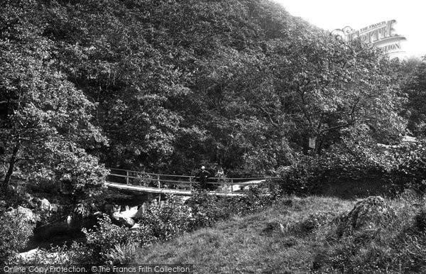 Photo of Bala, Footbridge On Aber Hirnant 1888
