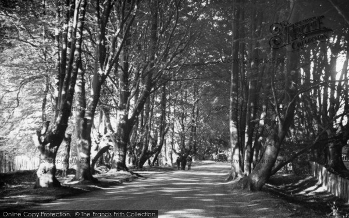 Photo of Balcombe, Beeches c.1955