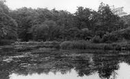 Balcombe, Lower Lake c.1955